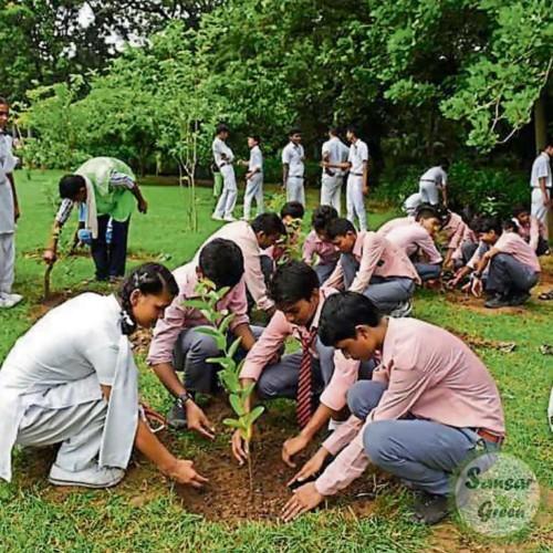 Corporate Plantation -  Landscape Consultancy - designing - planning in India - sansar green mission