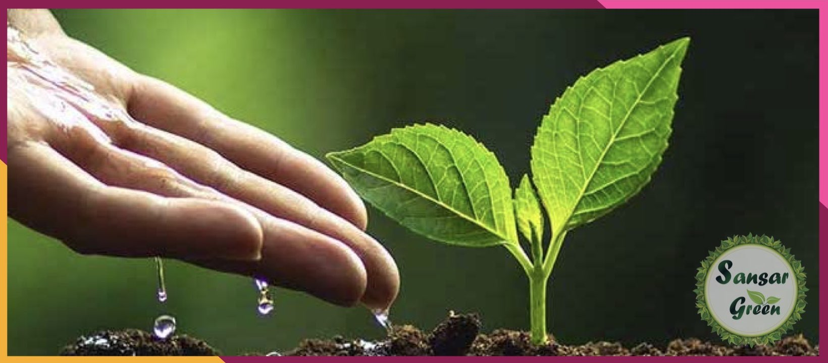Corporate Plantation - Landscape Consultancy - designing - planning in India - sansar green