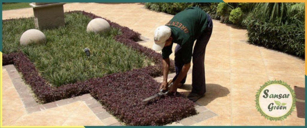 Garden Maintenance Services in India - Sansar Green